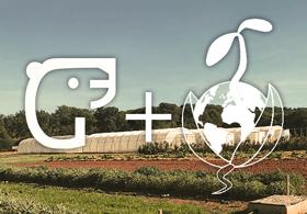 Agrosemens, notre premier client 100% BIO