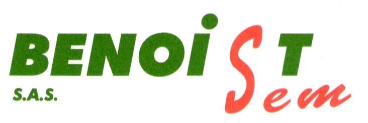 Logo_BenoistSem-en.jpg