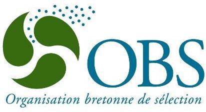 Logo_OBS-en.jpg